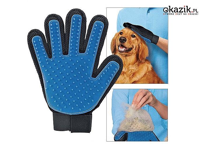 Rękawica do czesania zwierząt