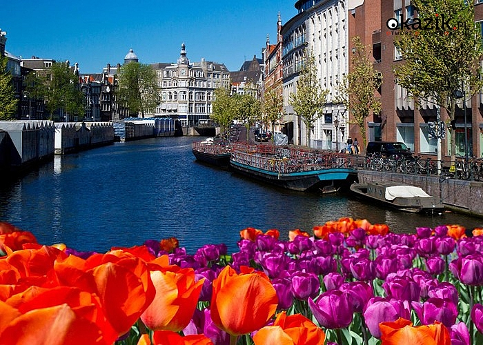 Ogród  KEUKENHOF, Parada Kwiatów oraz zwiedzanie AMSTERDAMU podczas kilkudniowej wycieczki