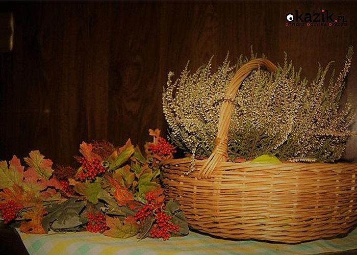 GOSPODARSTWO AGROTURYSTYCZNE Mistrz i Małgorzata w BORKOWIE w Świętokrzyskiem!