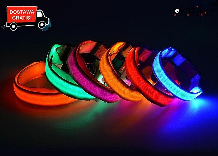 Zadbaj o bezpieczeństwo Twojego pupila! Odblaskowa obroża w kilku kolorach i rozmiarach do wyboru!