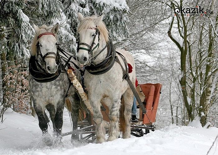 Nastrojowo w Karkonoszach! Spędź Święta Bożego Narodzenia w Ośrodku Wypoczynkowym Revita w Szklarskiej Porębie!