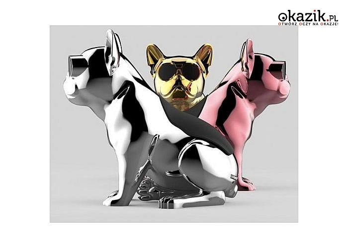 Duży głośnik Bluetooth! Oryginalny wzór – pies buldog francuski!