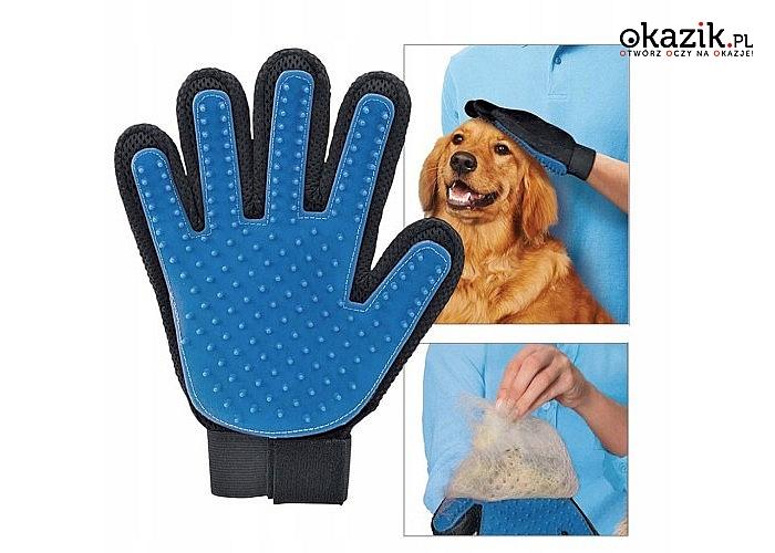 Rękawica do wyczesywania sierści Twojego pupila! Idealna także do masażu kotów i psów!