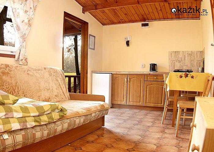 Majówkowo na południu Mazur! Ośrodek wypoczynkowy Sasek zaprasza na weekend w komfortowych domkach!