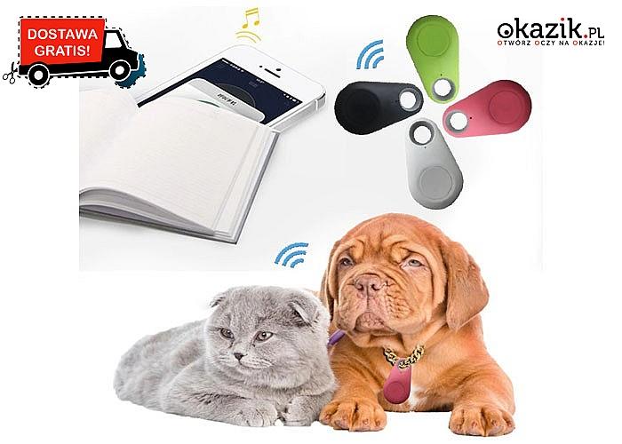 Rewelacyjny bezprzewodowy lokalizator Bluetooth! Możemy przypiąć do kluczy, obroży psa, włożyć do walizki i nie tylko!