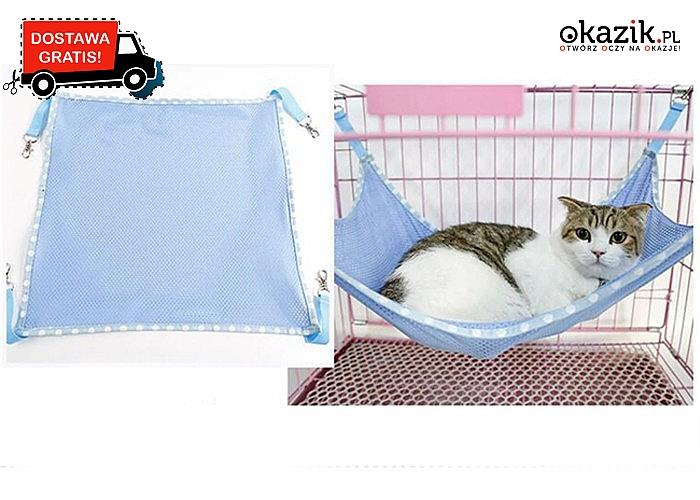 Twój kot pokocha ten hamak! Sprawi mu on wielką radość!