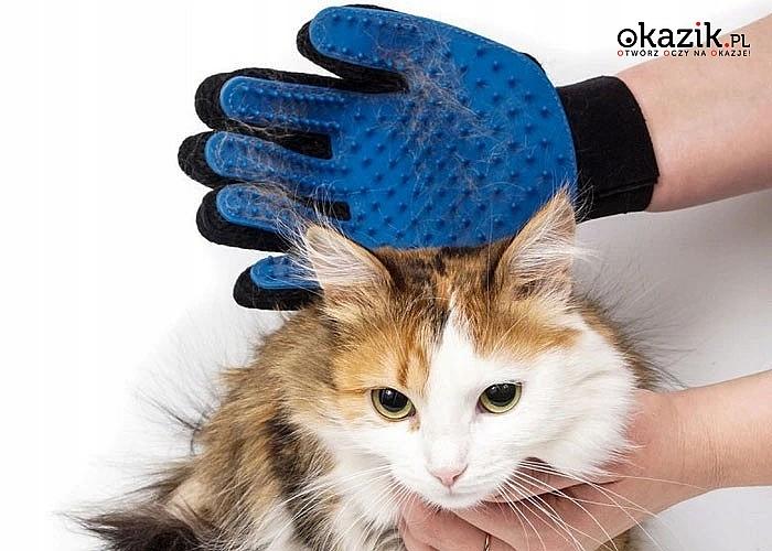 Rękawica do wyczesywania sierści! Praktyczny przedmiot do czesania oraz masażu skóry dla psa i kota!