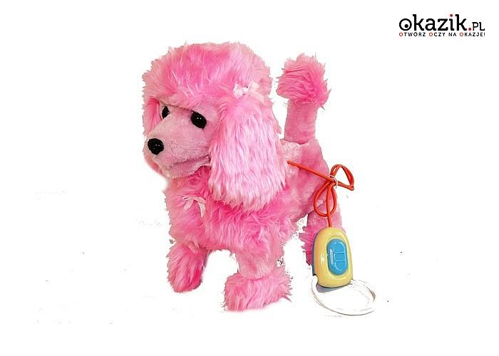 Dzięki naszej zabawce Twoje dziecko nauczy się postępować odpowiedzialnie ze zwierzątkiem!