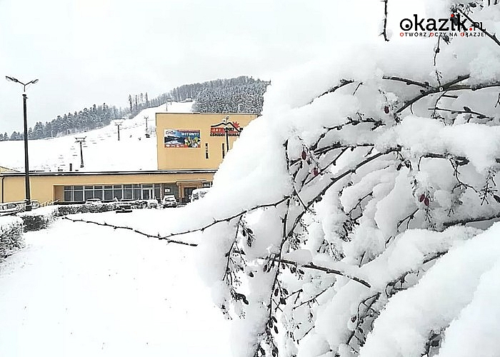 Free SKI to idealne rozwiązanie na zimowy wypoczynek w górach!