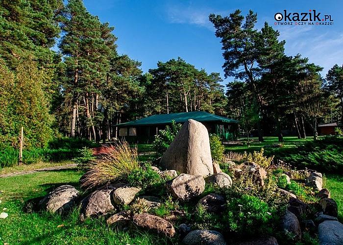 OW Kryształowa Przystań zaprasza na wymarzone wakacje wśród zieleni w Mrzeżynie