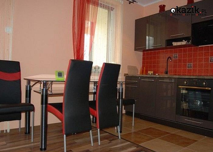 Apartament Rubin w Polanicy-Zdrój wyjątkowe miejsce na fajne wczasy