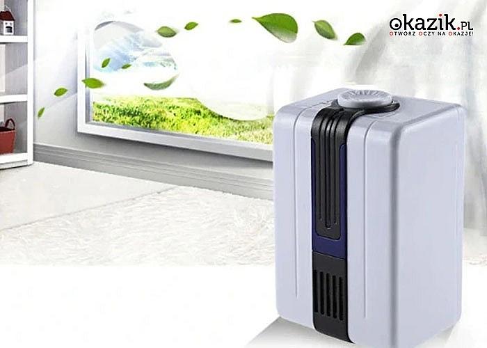 Sieciowy jonizator powietrza skutecznie oczyści i odświeży powietrze w domu