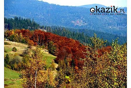 Gościniec Fenix w SZCZYRKU zaprasza na letnio-jesienny pobyt w przepięknych okolicznościach przyrody.