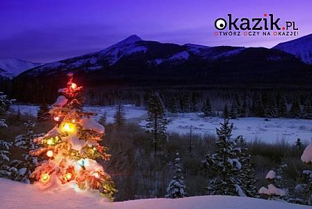 BOŻE NARODZENIE W BUKOWINIE TATRZAŃSKIEJ - Noclegi u Tomali,  świąteczna atmosfera!