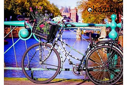 Amsterdam i Poczdam! Festiwal tulipanów i Miasto Pałaców! Przejazd autokarem klasy PLATINUM! Wyżywienie! Hotel***/****!