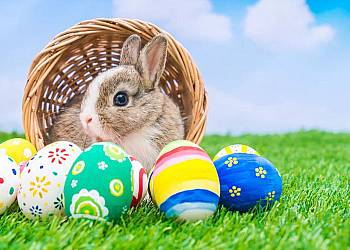 Wielkanoc w Hotelu Rozbicki