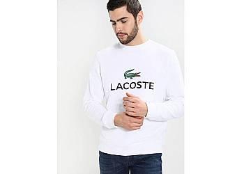 Bluza męska Lacoste