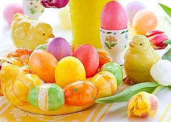Wielkanoc DW Harnaś
