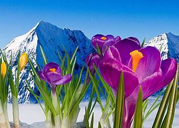 Wiosenne pobyty w Gliczarowie Górnym