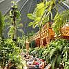 Największy na świecie tropikalny park wodny TROPICAL ISLANDS w Berlinie! Autokar klasy LUX! Opieka pilota!