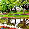 Amsterdam i festiwal tulipanów! Nocleg w hotelu! Autokar klasy LUX! Śniadanie!