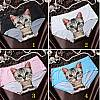 Bezszwowe figi damskie z uroczym kotkiem. Cztery wersje kolorystyczne do wyboru.